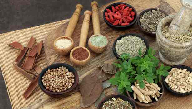 This image has an empty alt attribute; its file name is 202011251131462486_Tamil_News_Natural-medicine-immunity-in-the-body_SECVPF.jpg